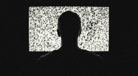 Courts claim early success in video hearing tests
